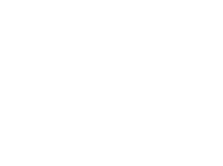 wasp specialist logo white footer